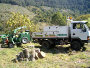 Swing Tree Service Truck and Chipper